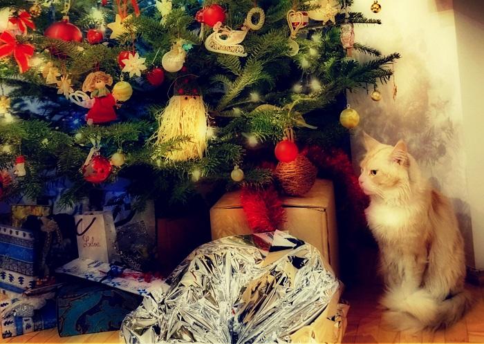 クリスマスイメージぼかし2-700px